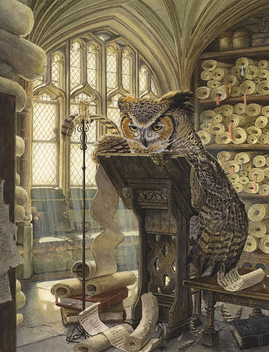 The Scribe by Chris Dunn Illustration. An owl writes in his study.