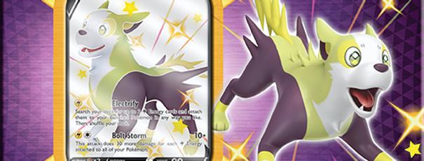 Pokemon - Shining Fates Tin - Boltund V