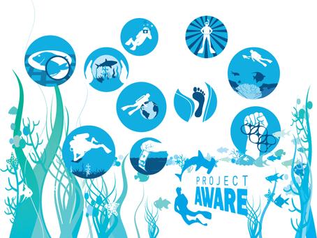 Denizleri Nasıl Koruyabiliriz?