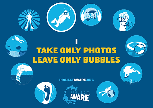 Tip-3-Take-Only-Photos-Leave-Only-Bubble
