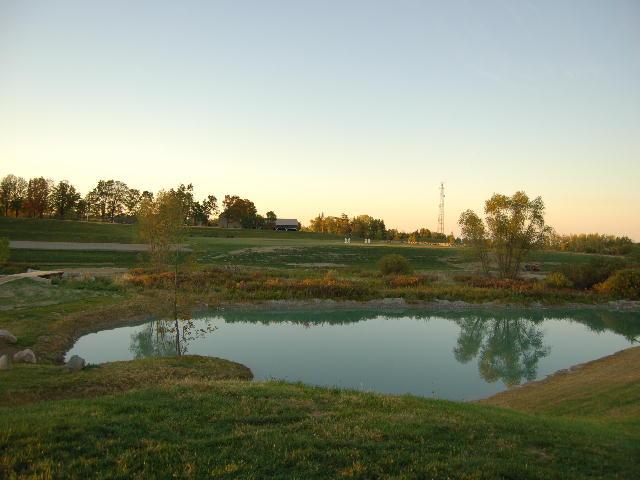 large pond.JPG