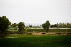 large - two grand prix fields.jpg