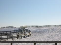 large- paddocks.JPG