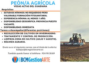 Oferta de trabajo de Peón/a Agrícola.