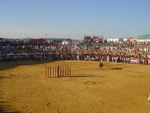 Fiestas Patronales 2005