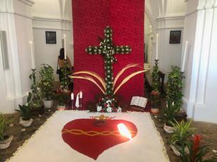 Galería fotográfica del Día de la Cruz 2019.