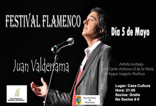 Festival Flamenco: Juan Valderrama.