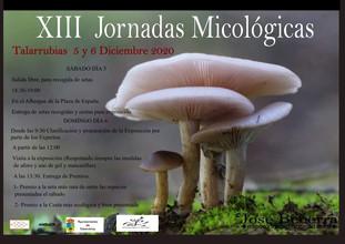 XIII JORNADAS MICOLÓGICAS.