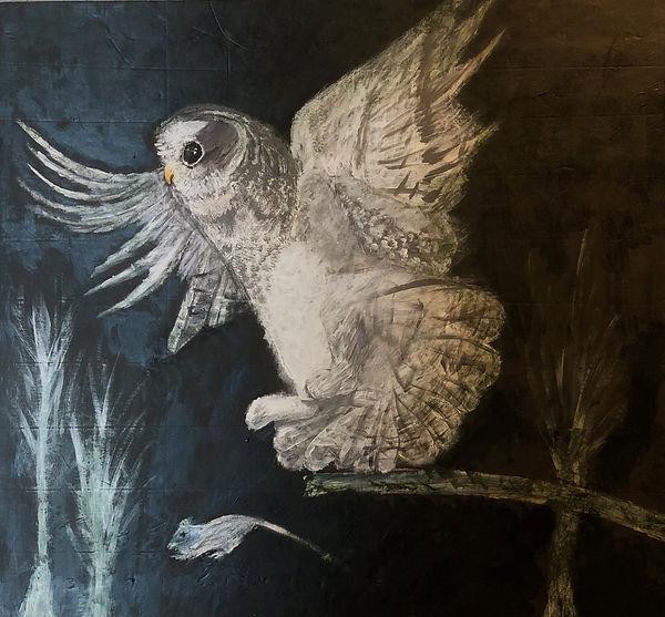 White owl hunting at night