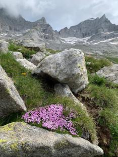 La Val Masino