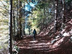 Autunno in Val Sedornia
