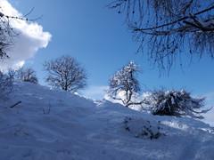 Neve al Pizzo D'Alben