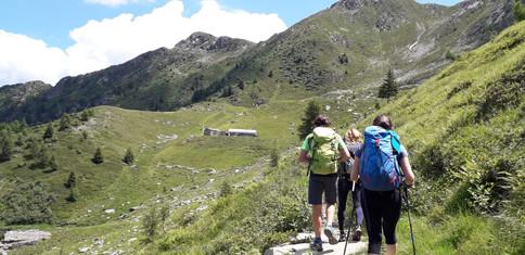 Accompagnando in Valle del Bitto di Albaredo ...  (sullo sfondo l'Alpe Pedroria)
