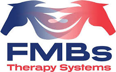 FMBs therapy systems partenaire de balnéo sport horses