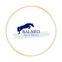 balnéo sport horses, balnéotherapie équine