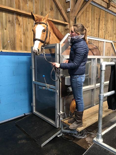 Spa Balnéo Sport Horses