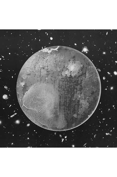 moonshot40.jpg