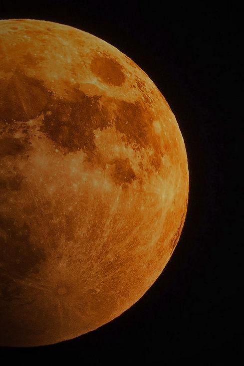 moonshot54.jpg