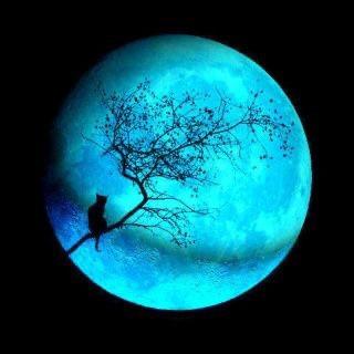 Luna Piena 🌕 Samhain