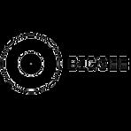 bigsee-wood-logo.png