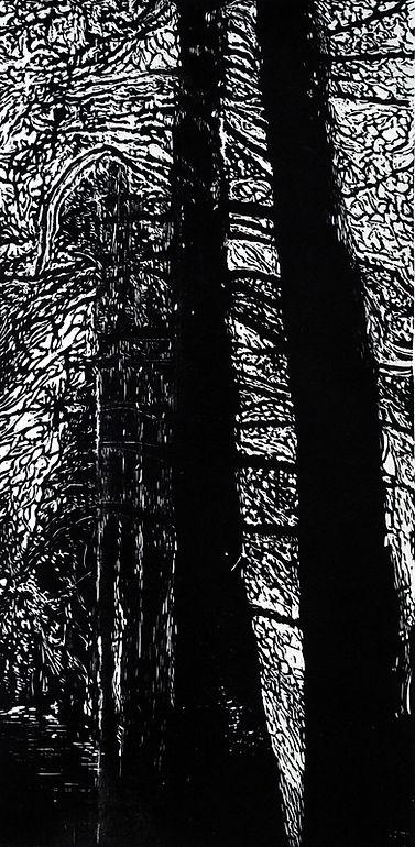De la serie bosques australes I.JPG
