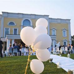 balony golden palace dywan