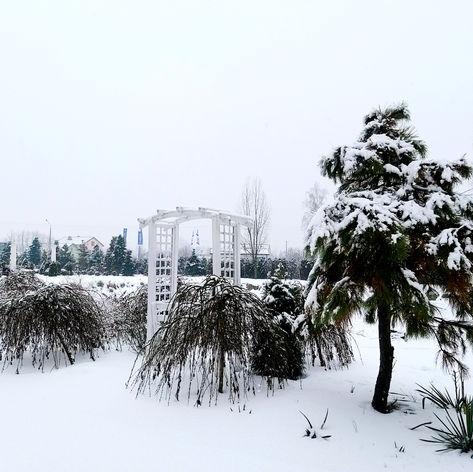 wiejca golden palace zima