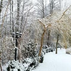 sala bankietowa golden palace śnieg