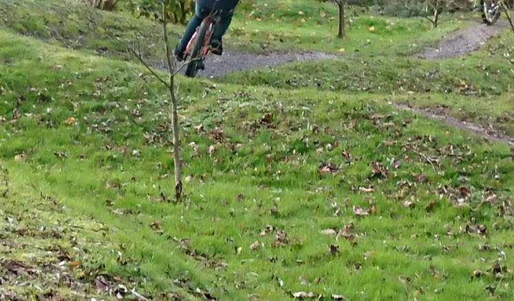 Mountain Biking 3.JPG