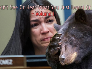 You Didn't See Or Hear What You Just Heard Or Saw - Volume II