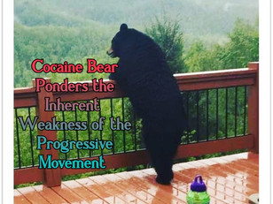 The Inherent Weakness in the Progressive Movement