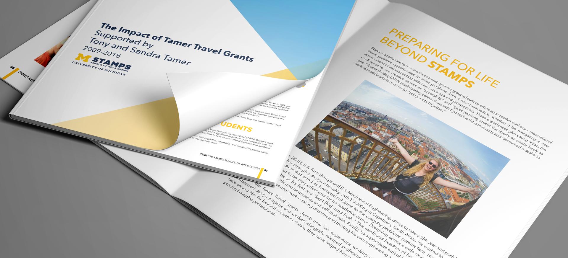 Tamer Travel Grants Report