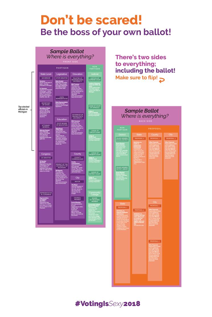 ballot infographic