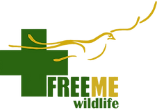 Freeme wildlife logo new.png