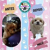 MALU ANTES E DEPOIS_edited.jpg