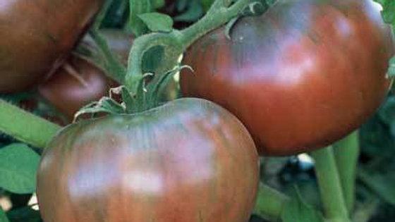 Tomato- Cherokee Purple, per lb