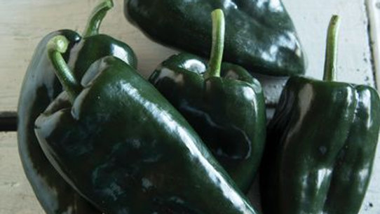 Pepper, Mild Heat Poblano, 1 lb.