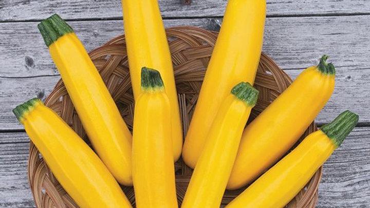 Golden Zucchini, 1 lb.