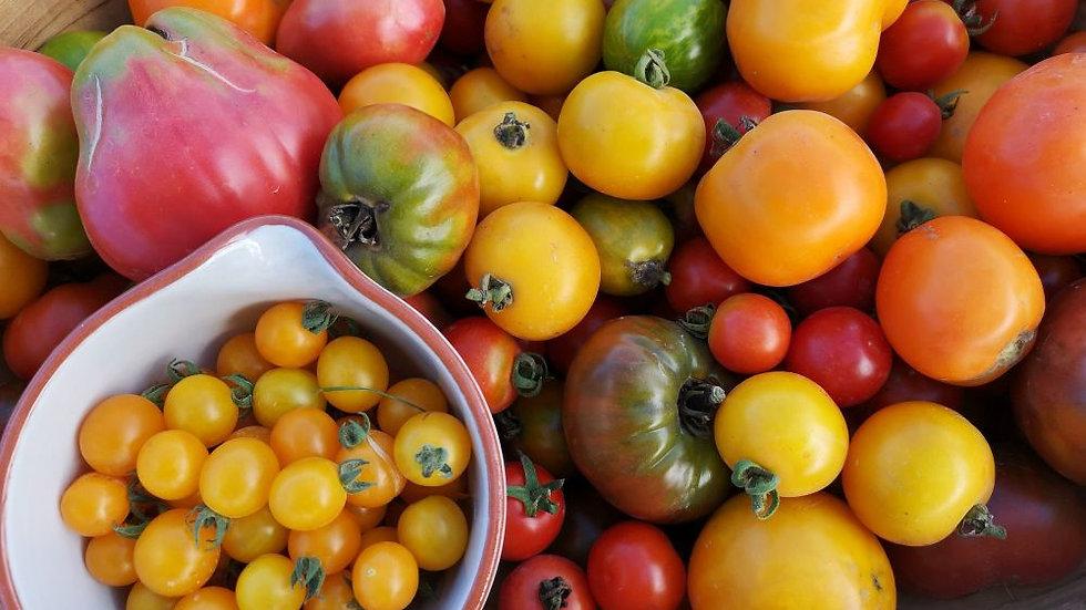 Tomato- Farmer's Blend, 10lbs