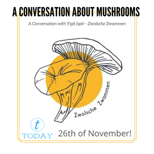 A CONVERSATION ABOUT MUSHROOMS! (2).png