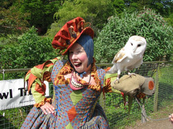 Owl and Phoole