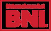 BNI-Unternehmen-Button-RGB-Weiss.png