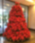 Poinsettia-Tree-Imagine-Lighting-Christm