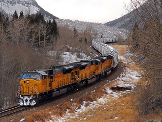 Canadian Pacific addressing animal deaths