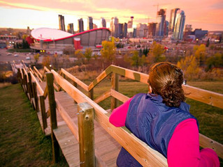 Provincial money for new Calgary arena not out of the question: Notley