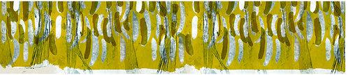 Acacia Gold
