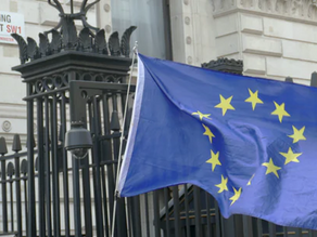Brexit Transition: The Future of Your Business