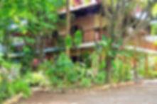 DSC_0194-2-1_edited.jpg