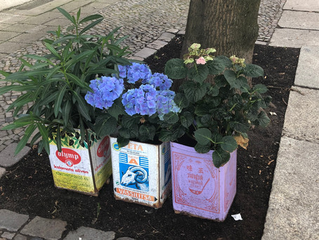 Inspiring ideas for container gardening