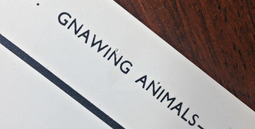 Gnawing Animals I wall chart